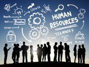 Khối a nên học ngành gì - quản trị nhân sự